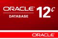 SI RICERCA: DBA Oracle su Milano