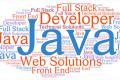 RICERCA : n.2 Solution Developer Java