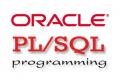 RICERCA :  1 Developer PL-SQL (Middle/Senior) su Roma